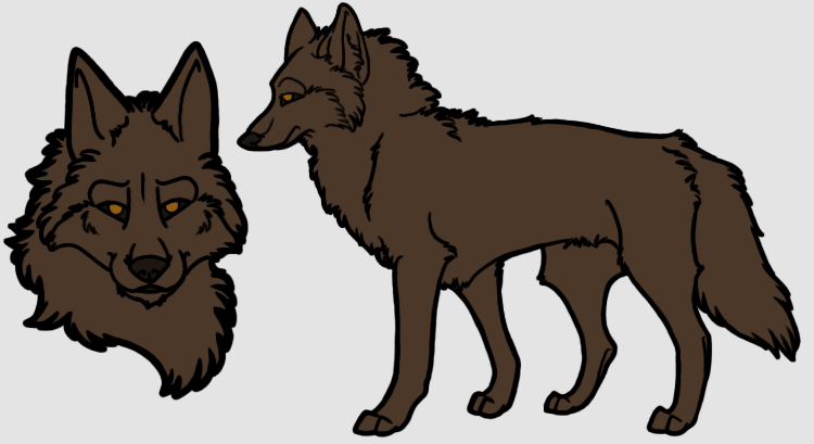 Coyote Reference PSD Preview Image