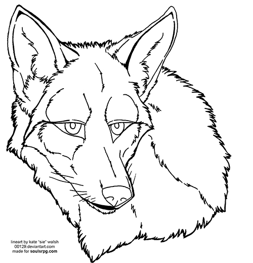 Coyote Face Lineart Preview Image