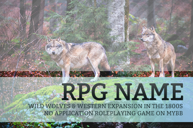 Wolf RPG Promotion PSD Template Preview Image